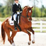 Dressage in Florida 2010