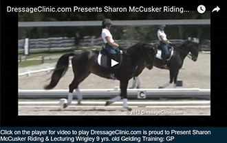 330XVIDEO SAMPLE SHARON McCUSKER