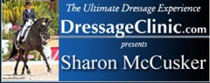 330X_HEAD BANNER FOR SHARON McCUSKER