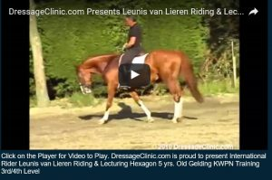 VIDEO SAMPLE LEUNIS VAN LIEREN