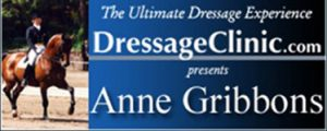 374x150--HEAD-BANNER-ANNE-GRIBBONS