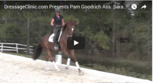 Pam Goodrich Sample Video July 24 2017 newsletter